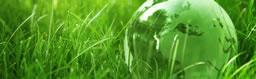 吸音棉共建绿色环境